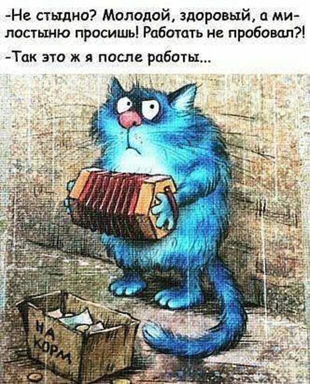 Мой кот принял буддизм и дал обет мурчания))