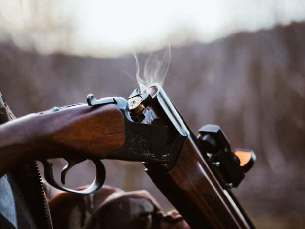 Охоту запретили в лесах вокруг Ижевска