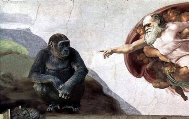 Новая гипотеза появления человечества