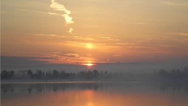 Тепло и без осадков. Прогноз погоды в Алтайском крае на 29 июля