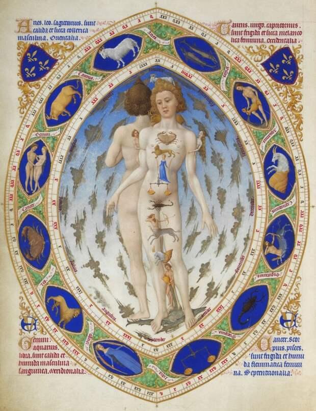 Иллюстрация из Часослова герцога Беррийского, отображающая связь знаков зодиака с Гиппократовыми темпераментами. XV век