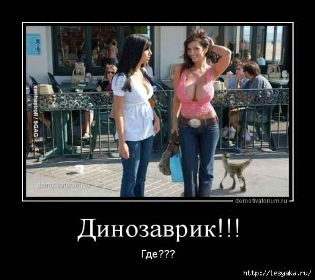 1372745880_novye-demki-5 (500x445, 104Kb)