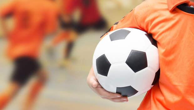 Спортивные секции Подольска переведут на дистанционную работу с субботы