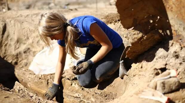 Археологи нашли самый древний духовой инструмент, которому 18 тысяч лет