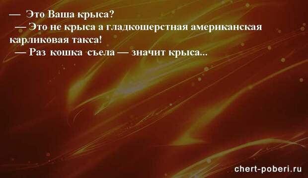 Самые смешные анекдоты ежедневная подборка chert-poberi-anekdoty-chert-poberi-anekdoty-05540603092020-10 картинка chert-poberi-anekdoty-05540603092020-10