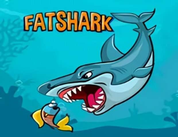 Толстая акула