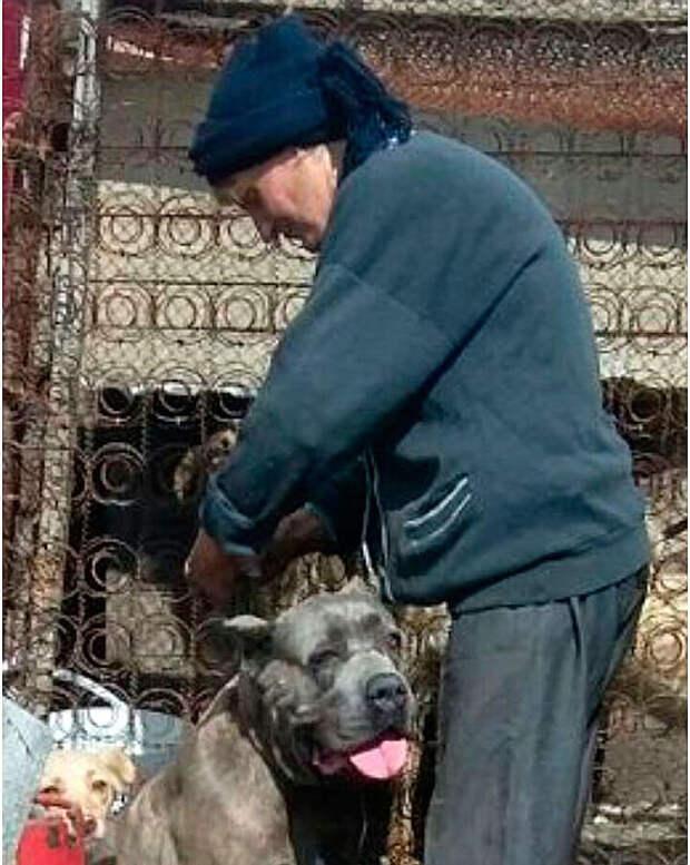Бывшая детдомовка считает собак своей родней и собирает со всей округи. Фото: из личного архива героя(ев) публикации