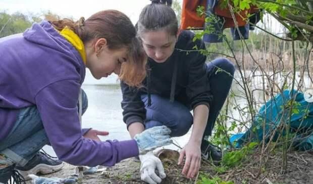 Вход натерриторию Ботанического сада вРостове-на-Дону сделали платным