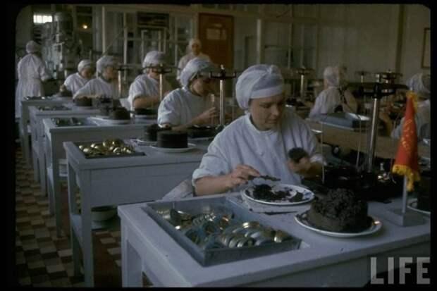 Как производили чёрную икру в 60-е годы