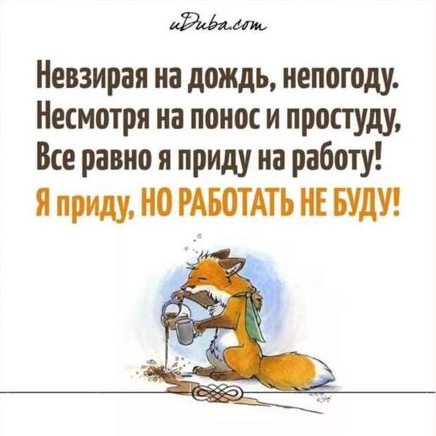 Смешные комментарии. Подборка chert-poberi-kom-chert-poberi-kom-59040703092020-11 картинка chert-poberi-kom-59040703092020-11