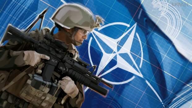 Дудчак призвал возвести «Железный занавес» после фактов гей-распутства солдат НАТО