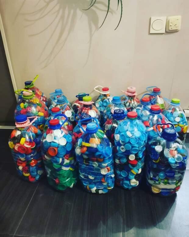 В школе на Алтуфьевском шоссе собрали двадцать килограммов пластика