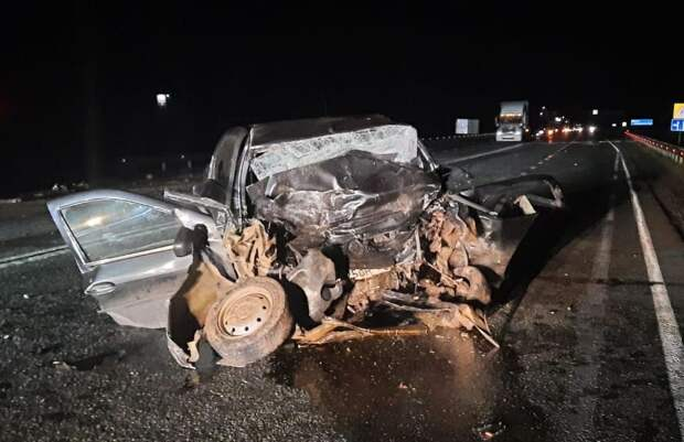 Мужчина и ребенок погибли в ночном ДТП на трассе в Удмуртии