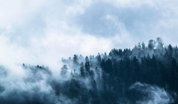 Осенняя погода сдождем итуманом ожидается наСтаврополье спонедельника