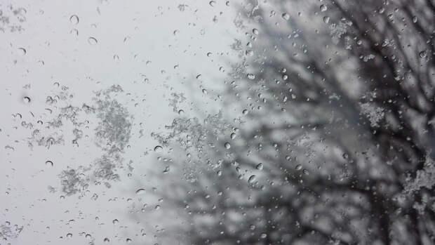 Вильфанд спрогнозировал мокрый снег с дождем в начале недели в Москве