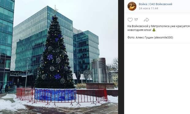 Фото дня: в Войковском появляются елки