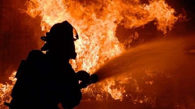 Крупнейший пожар в истории уничтожает леса Колорадо