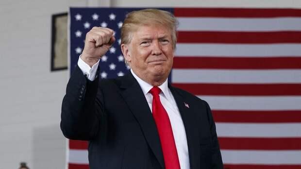 Как самая известная сцена из «Один дома — 2» предсказала будущую политику Трампа
