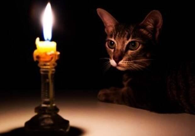15 октября в Азарово, Рождествено и Тинино отключат электричество