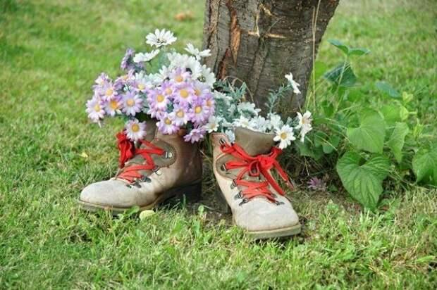 Кажется, будто цветы сами проросли в случайно оставленных ботинках