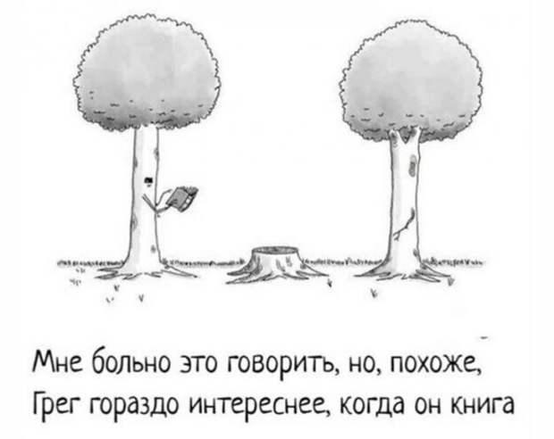 Юмор про дерево
