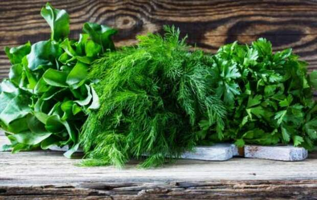 6 вариантов заморозить зелень на зиму, чтобы сохранить ее свежесть и аромат