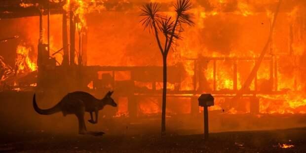 В Австралии закрываются посольства из-за пожаров