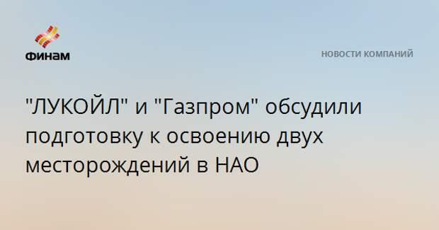 """""""ЛУКОЙЛ"""" и """"Газпром"""" обсудили подготовку к освоению двух месторождений в НАО"""