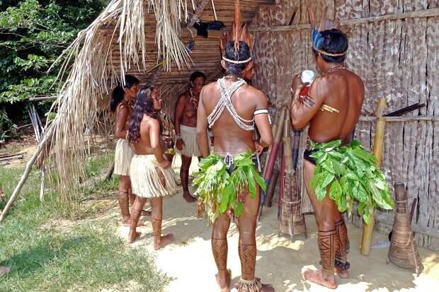 Аборигены амазонской сельвы убили ведущего бразильского эксперта по их культуре