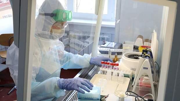 В России разработали способ уничтожения коронавируса