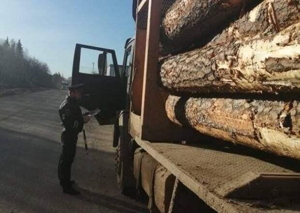 В Сыктывкаре лесовозы 90 раз попались на нарушении закона