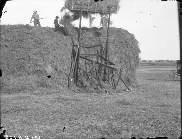 Как поднималась американская целина. Архивные фотографии пионеров Великих равнин конца 19-го века 24