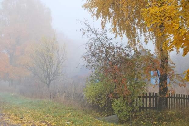 Красоты России (#468)