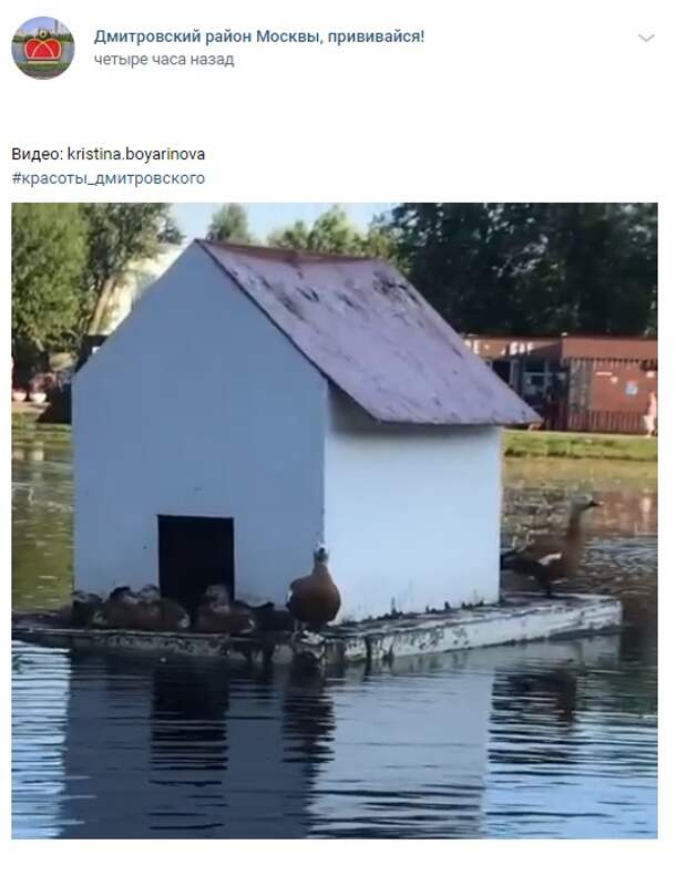 Фото дня: плавучие домики на Ангарских