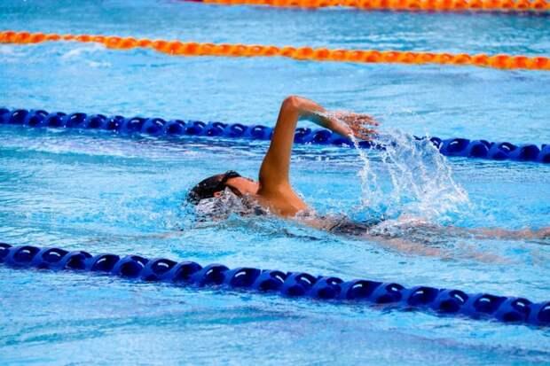 В Молжаниновском началось формирование детской команды пловцов