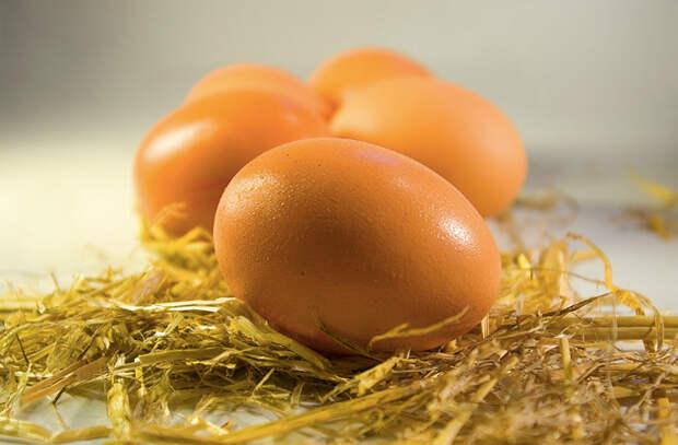 Взбалтываем яйца и делаем вкуснейший завтрак
