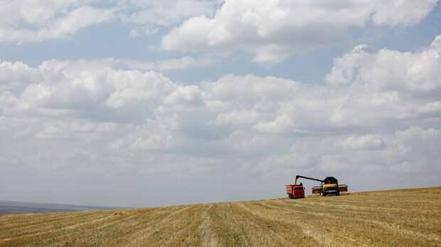 Россия сделала ставку на «зерновую дипломатию»