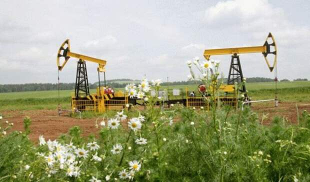 Рейтинговое агентство Sustainalytics улучшило позиции «Роснефти» нарекордные 4,7 балла