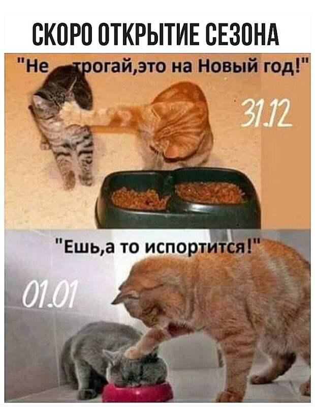 Звонит Рабинович в полицию. — Алло, полиция! У меня в квартире массовые беспорядки!...