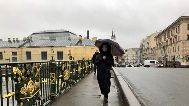 Похолодание и дожди ожидают придут в Петербург 21 апреля