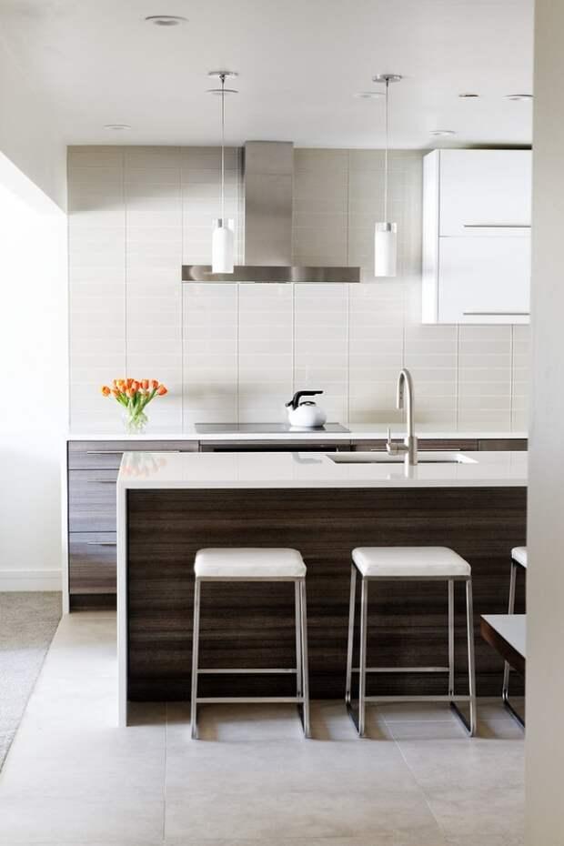 Элегантные цветовые акценты в светлой кухне на элементах кухонного гарнитура из темного венге