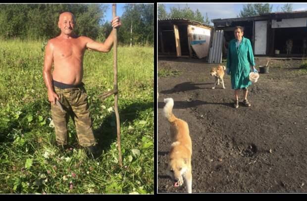«Бросить их невозможно!»: собачий приют на деньги пенсионеров