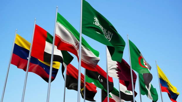 Ирак хочет созвать внеочередную встречу ОПЕК+