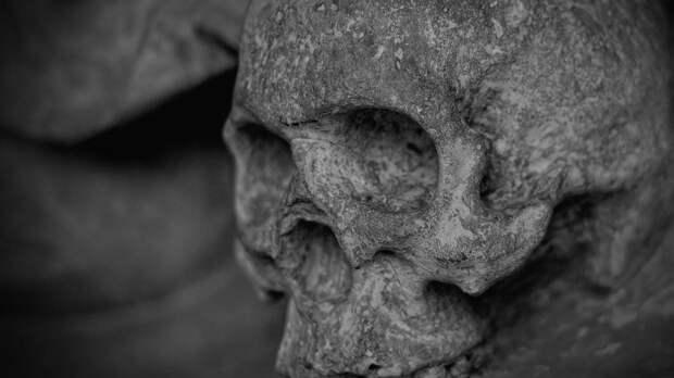 Мешки с костями нашли при строительстве школы на севере Москвы