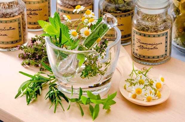 Эссенции и мази из лекарственных растений