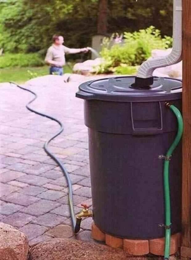 Чтобы сэкономить на поливе грядок, поставьте бочки к стоку воды с крыш, потом этой водой хорошо поливать ваши насаждения.