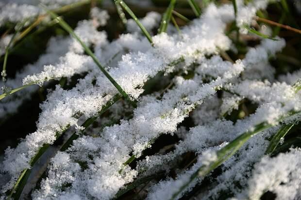 Первый снег в Крыму может выпасть уже на этой неделе