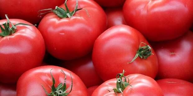 Алиев удивился запрету на поставки помидоров в Россию