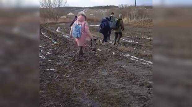 Вслободе вРостовской области уединственной школы нет дороги