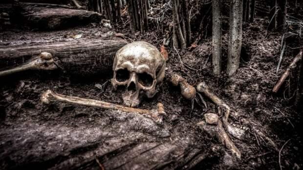 В Карелии нашли захоронение жертв финских концлагерей